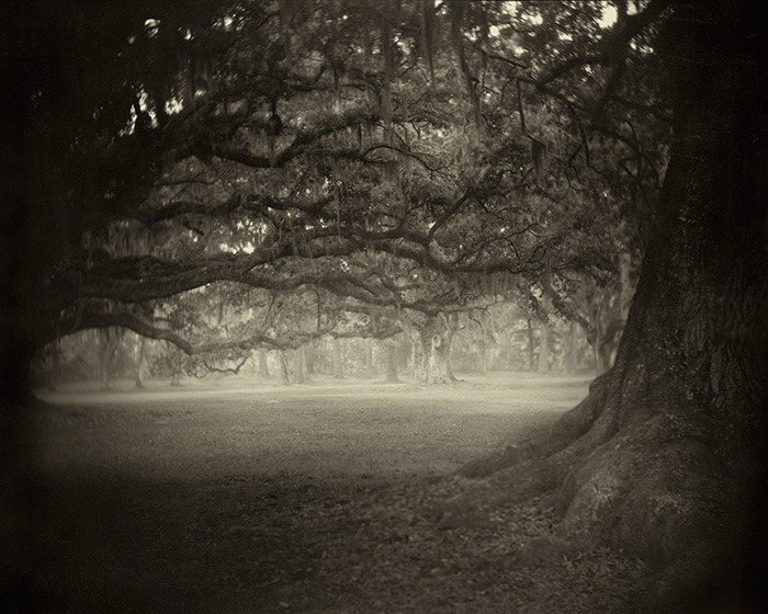 Sally Mann landscape photo