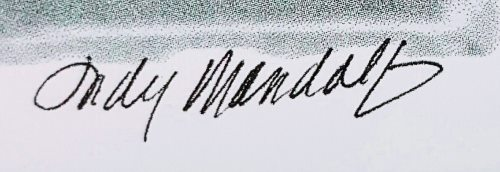 Judy Mandolf signature detail